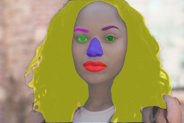 Face segmentation network product image