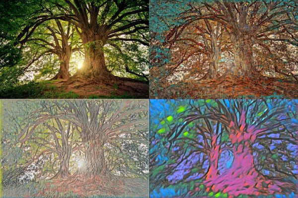 Neural Style of Dutch Painters landscape example